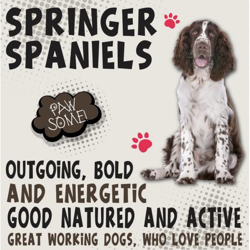 Springer Spaniel Metal Wall Sign