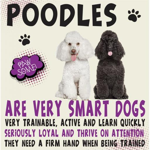 Poodles Metal Wall Sign
