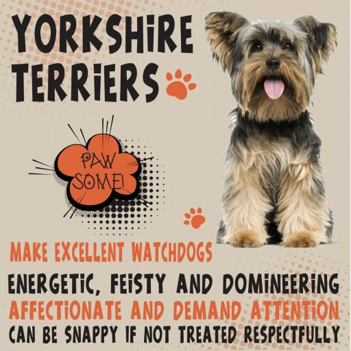 Yorkshire Terrier Metal Wall Sign