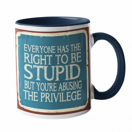 Everyone has the right to be stupid Humour Mug