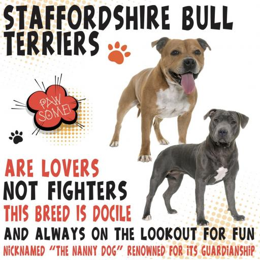 Staffordshire Bull Metal Wall Sign